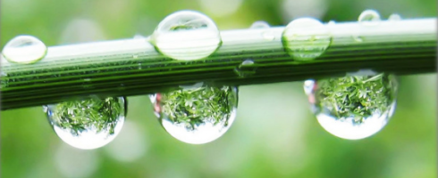 rain-drops-10-575x429